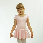 Basic Short Sleeve Nylon Skirted Leotard 542DR